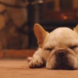 冬の救世主床暖房。豊富な床材から理想の床とお部屋づくりを